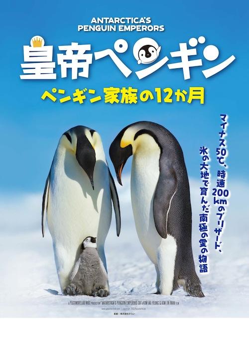 皇帝ペンギン ペンギン家族の12ヶ月