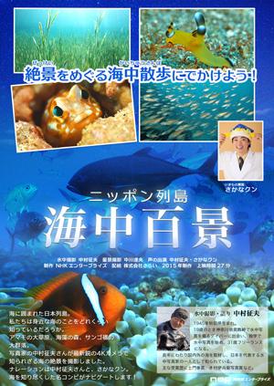 ニッポン列島 海中百景